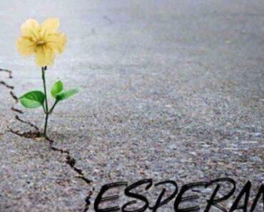 9 frases bíblicas de esperanza y aliento que te renovará el alma