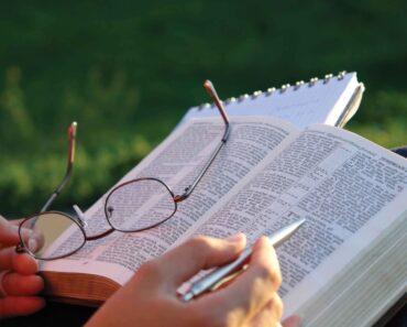 Cómo leer la Biblia diariamente y conviertete en un sabio de Dios