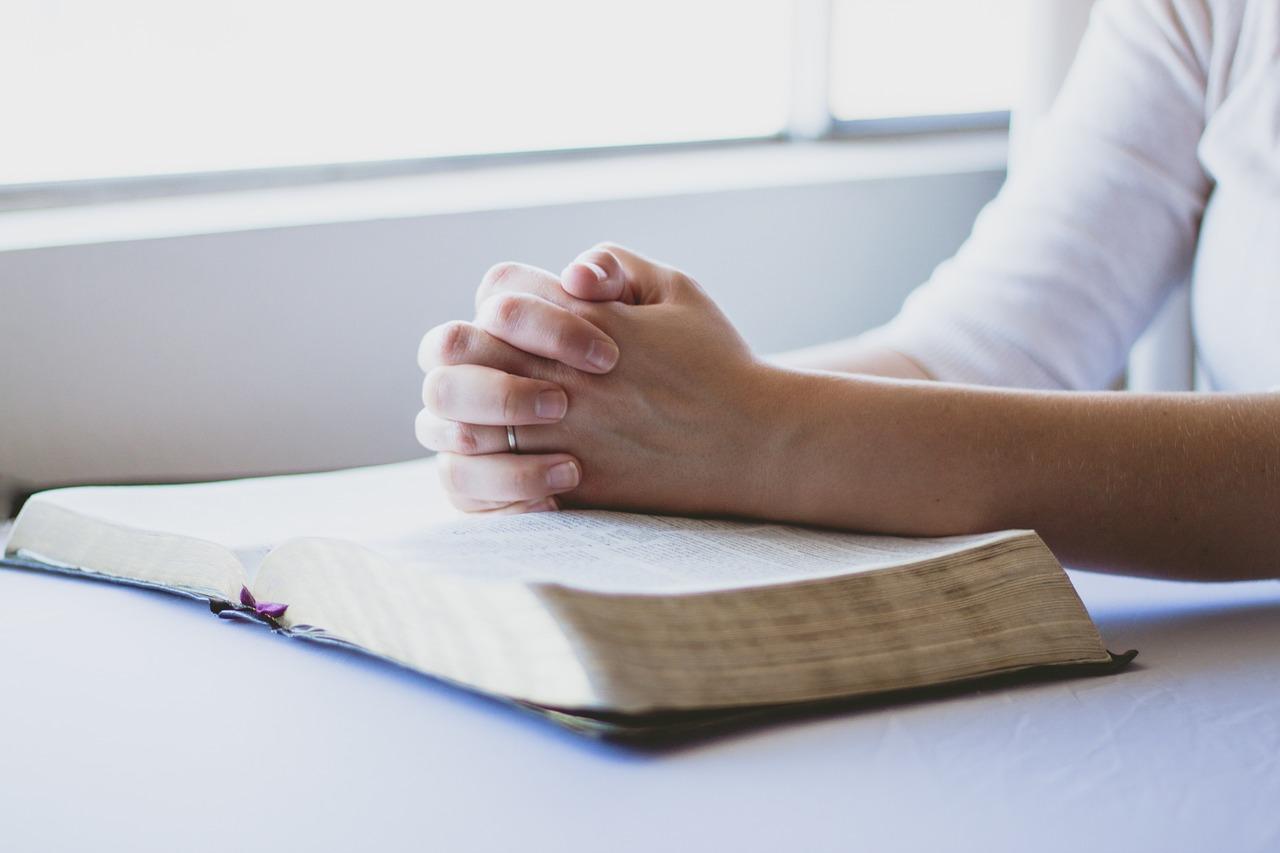 Reflexión «Si tuvieras fe como un grano de mostaza»